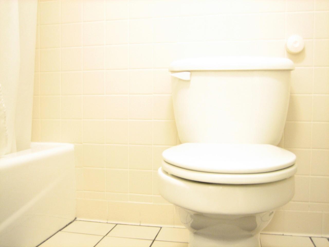 Wyposaż Swoją łazienkę Muszle Klozetowe Come To Help